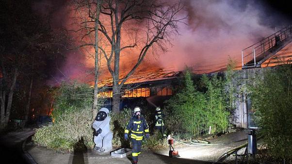 حريق حديقة في ألمانيا