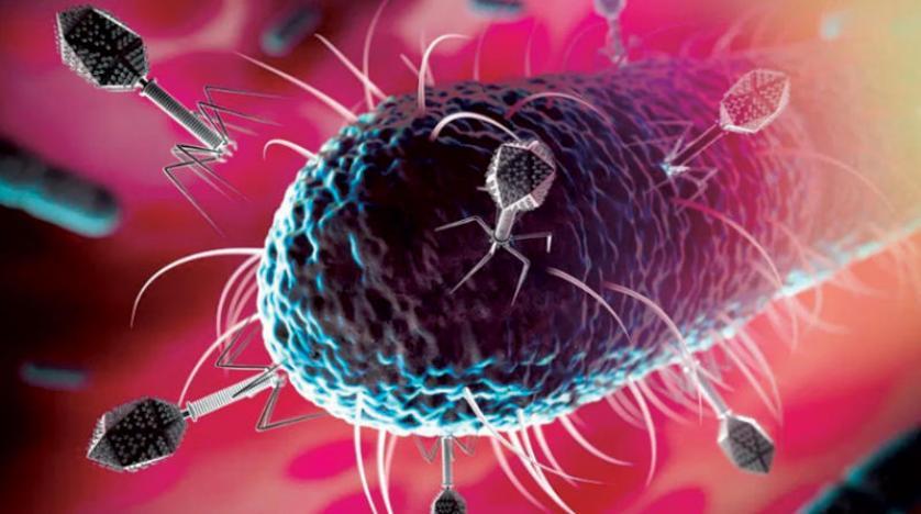الفيروسات النائمة